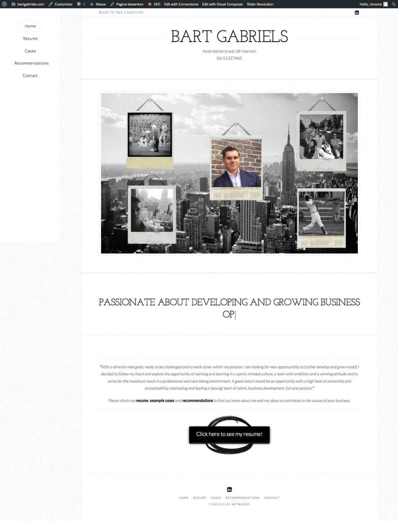 Bart Gabriels - Online Resume 2016-01-19 15-53-04 (1)